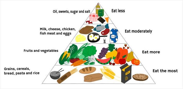 Food diagram | Health and Nutrition
