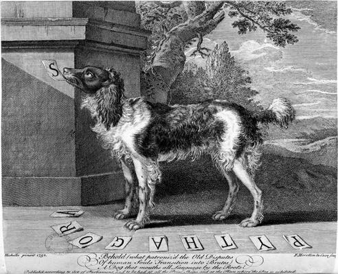 The New Chien Savant, or Learned Dog, print made by F-Morellon la Cave, 1752