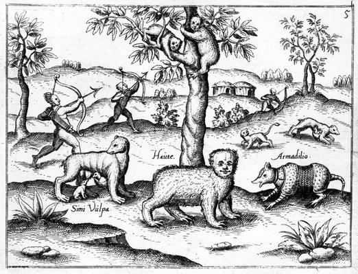 Simi Vulpa, Haute and Armadilio, illustration from 'The Discovery of Guiana' by Sir Walter Raleigh, published c.1599