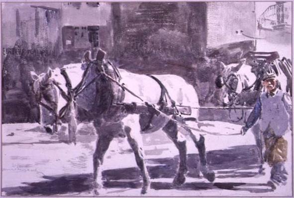 Two Percheron Horses