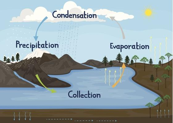 Water/Hydrologic Cycle in Nature | Earth's Surface