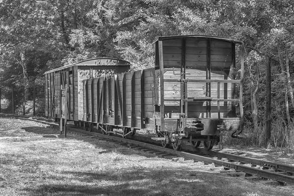 concentration camp | World War II