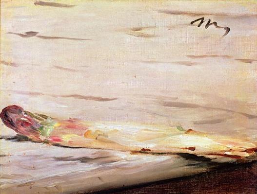 Asparagus, 1880