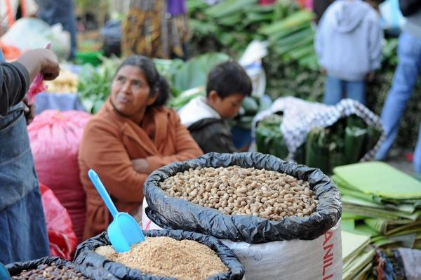 Sacks of Nuts at Market Stall, Antigua, Guatemala | Earth's Resources