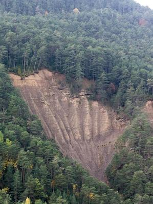 Landslide of Lands in a Forest of the Pyrenees | Earth's Surface
