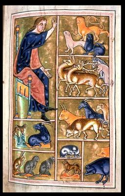 Ms 24 f.5 Adam naming the animals, of North Midlands origin, from the Aberdeen Bestiary