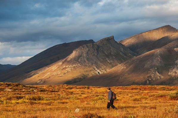 Hiker on Tundra Near Noatak River Above the Arctic Circle | Earth's Surface