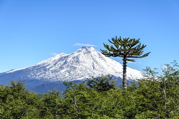 Conguillo National Park, Llaima Volcano | Earth's Surface