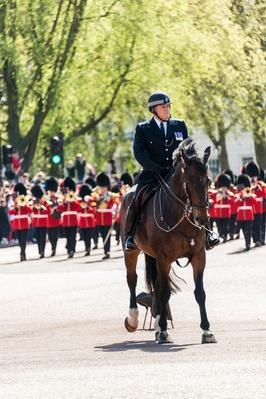 Changing of the Guard, London, England | Earth's Resources