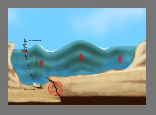 Tsunami Warning Diagram | Natural Disasters: Hurricanes, Tsunamis, Earthquakes