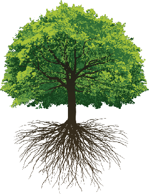 Great Oak Roots | Clipart