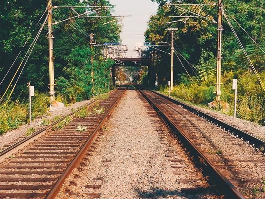 Railroad Tracks Amidst Trees | Human Impact on the Physical Environment | Geography