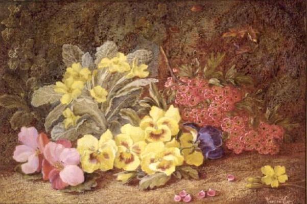 Roses and Primroses