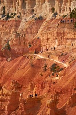 Hikers on Navajo Loop Trail, Utah, USA | Earth's Surface