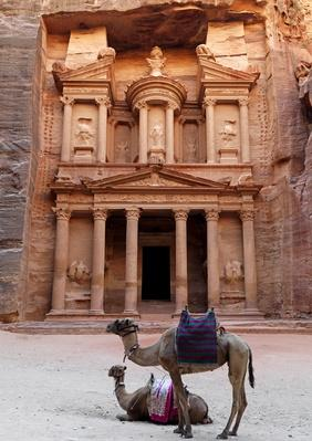 Jordan, Petra, Al Khazneh, Camels in front of Treasury | Monuments and Buildings