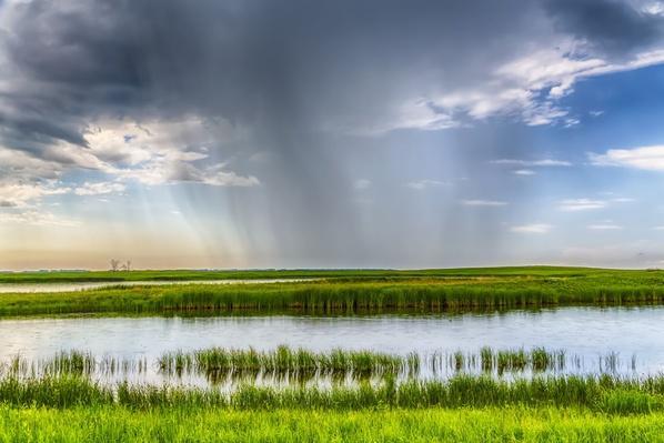 USA, North Dakota, Langdon, Rain on Prairie Landscape | Earth's Surface