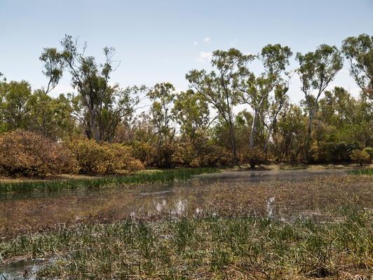 Lake Gladstone   Earth's Surface