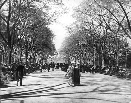 Central Park Stroll | The Gilded Age (1870-1910) | U.S. History