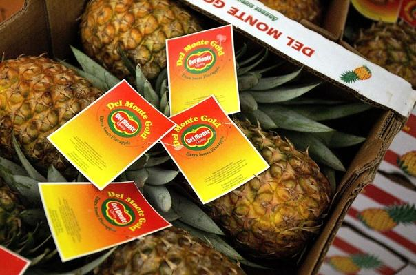 Del Monte Stops Growing Pineapples in Hawaii | Earth's Resources