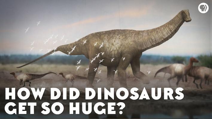 How Did Dinosaurs Get So Huge? | Eons
