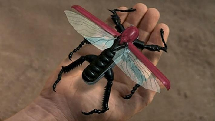 The Shape of Life | Arthropod Animation: Swiss Army Knife