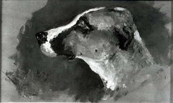 Head of a Dog with Short Ears, 1879