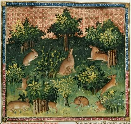 Ms Fr 616 fol.24v Hares in a Wood, from the 'Livre de la Chasse' by Gaston Phebus de Foix