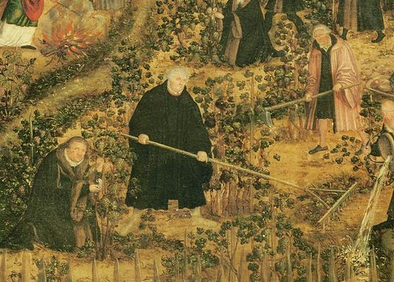 The Vineyard of the Lord, 1569