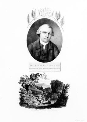 Frontispiece of 'Flora Londinensis', with a portrait of the author William Curtis, edition published in 1802
