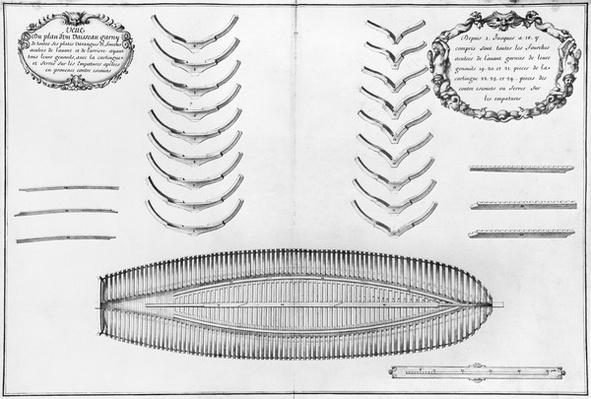 Plan of a vessel with all its floor plates and forks, illustration from the 'Atlas de Colbert', plate 8