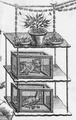 Experimenting with electricity, plate from 'Essai sur l'electricite des corps' by Abbot Jean Antoine Nollet, detail of animals in cages, 1749