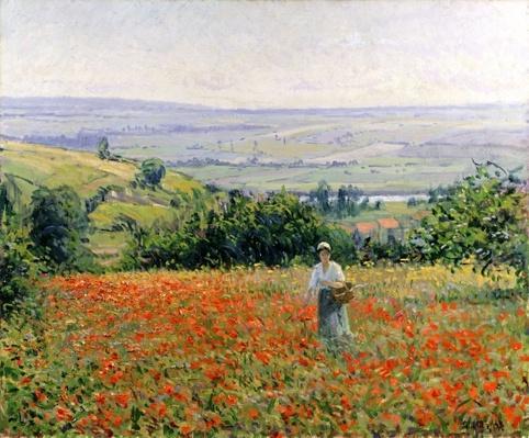 Woman in a Poppy Field
