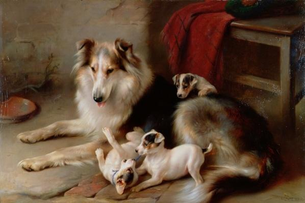 A Collie with Fox Terrier Puppies, 1913