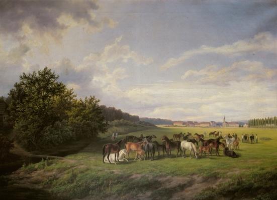 View of the Kladrub Studfarm in Bohemia, 1850