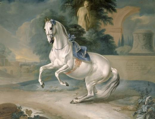 The White Stallion 'Leal' en levade, 1721