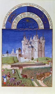 Fascimile of September: harvesting grapes by the Limbourg brothers, from the 'Tres Riches Heures du Duc de Berry'