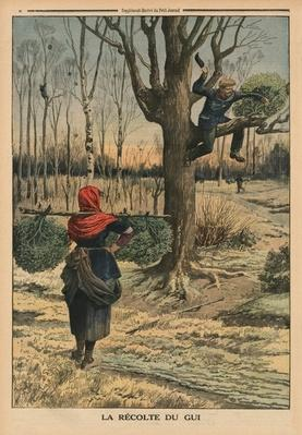 Cutting the mistletoe, back cover illustration from 'Le Petit Journal', supplement illustre, 4th January 1914