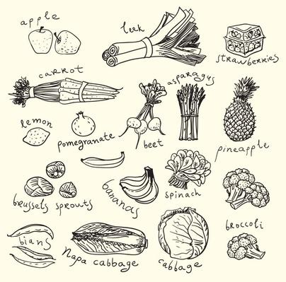 Healthy Food Sketch | Health and Nutrition