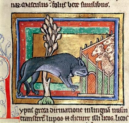 MS Roy 12 C XIX fol.19 A wolf outside a sheep fold, from a bestiary or moralised history, Durham