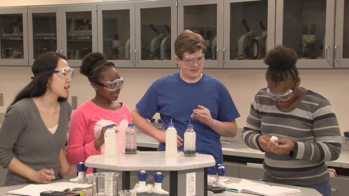 Unit 6: Segment G | Chemistry Matters