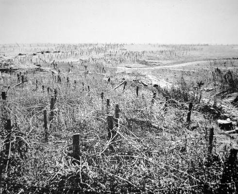 No Man's Land, 1914-18