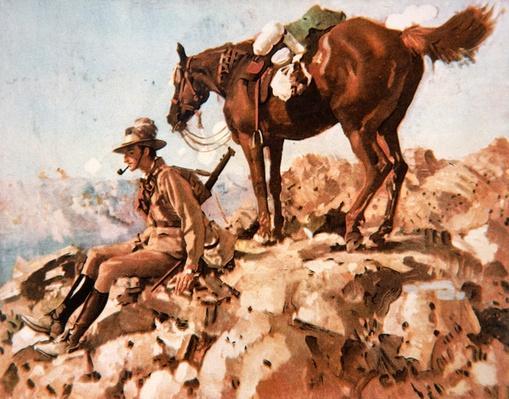 Australian Light Horseman, Allenby's Desert Campaign, 1914-18