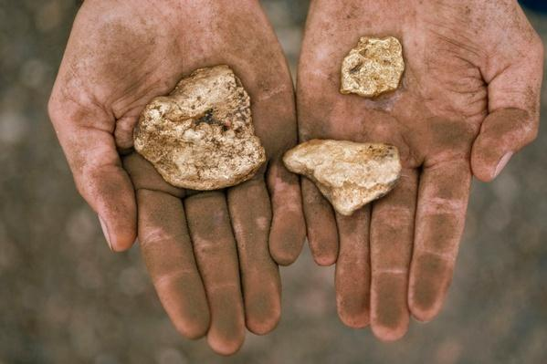 Three Gold Nuggets in a Miner's Hands -Amazon River Basin | Earth's Resources