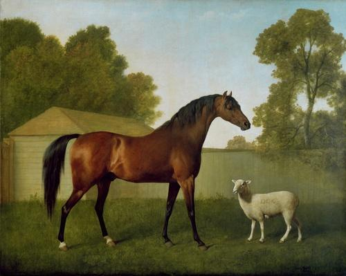 Dungannon, the property of Colonel O'Kelly, painted in a paddock with a sheep, 1793