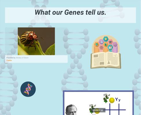 WCHSscience l genetics