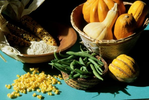Seminole Traditional Foods | Native American Civilizations | U.S. History