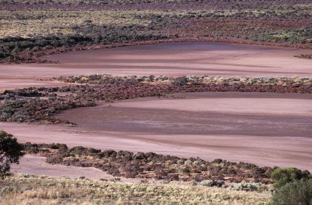 The Serpentine Lakes Salt Clay Pans and Salt Bush | Earth's Surface