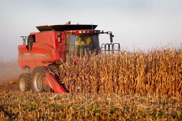 The Heartland Enters Harvest Season | Earth's Resources