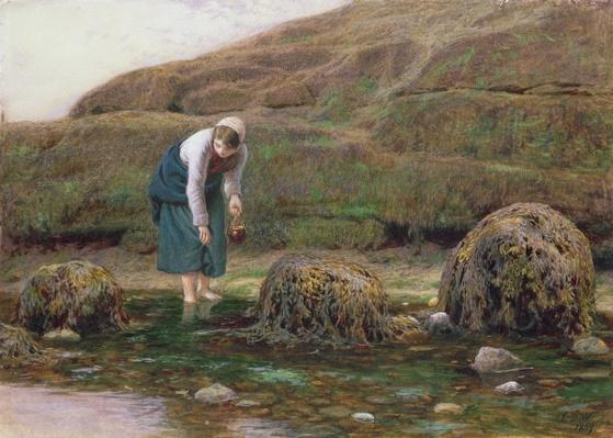 The Winkle Gatherer, 1869