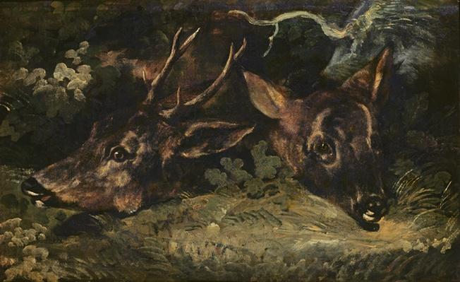 Heads of Roe Deer, 1815